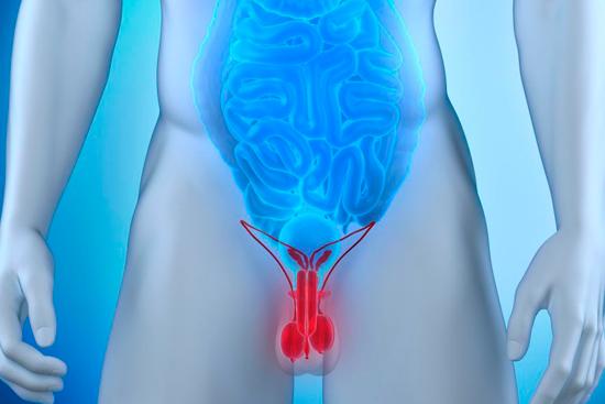 Боль в яичниках при простатите тинидазол для лечения простатита
